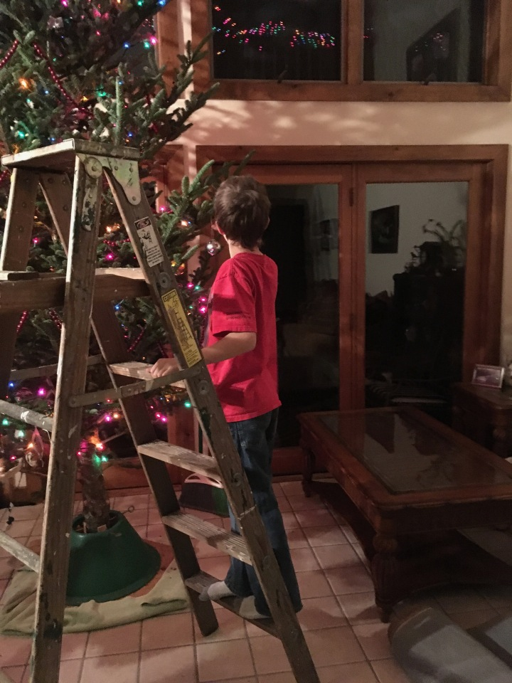 harry decorating first tree