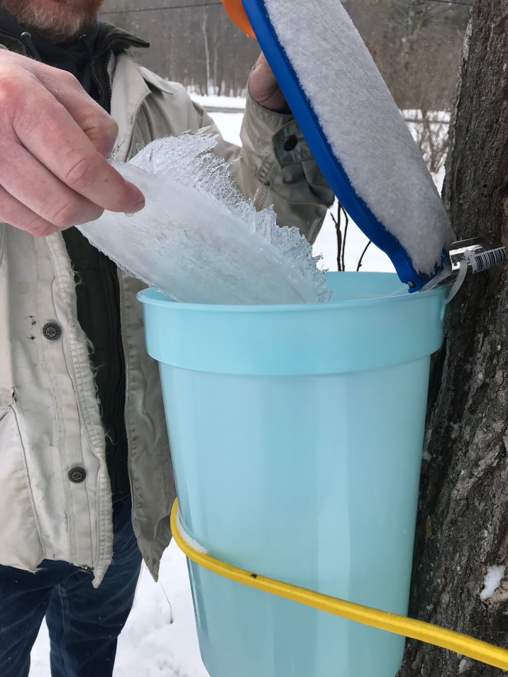ice in the bucket