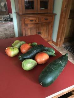 Fall veggies 2