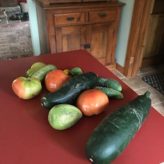 Fall veggies 2